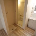 室内洗濯機 浴室 洗面台